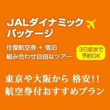 ≪JAL航空券パックプラン≫