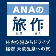 ≪ANA航空券パックプラン≫